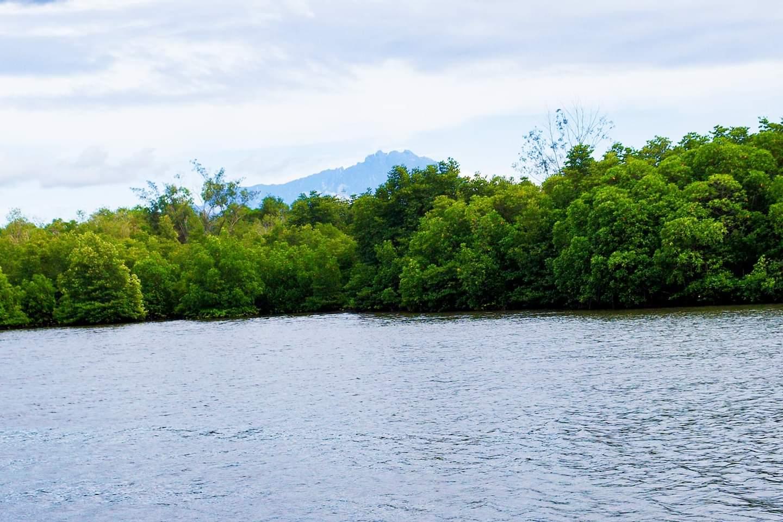 沙巴(Sabah)-龍尾灣自然生態保護區(Borneo Kellybays):在細滑白沙灘的美麗海灘聽著海浪蟲鳥鳴聲享受SPA-蜜月遊記